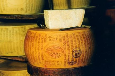 Parmigiano Reggiano, il primo passo è la qualità dei foraggi