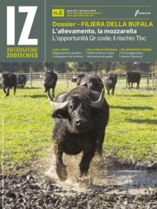IZ 06_2015 COPERTINA