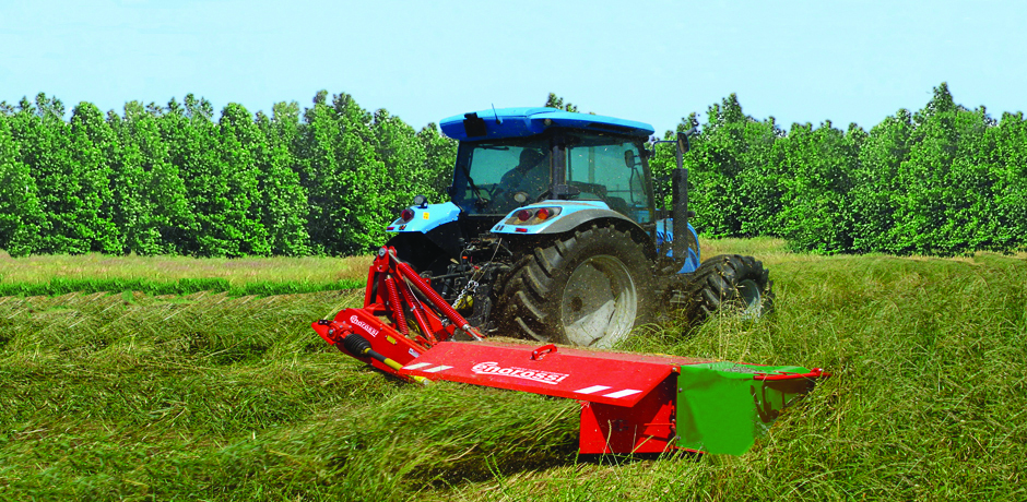 Taglio dell'erba per evitare il rischio di contaminazione