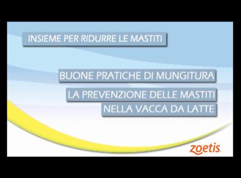 www.informatorezootecnico.it