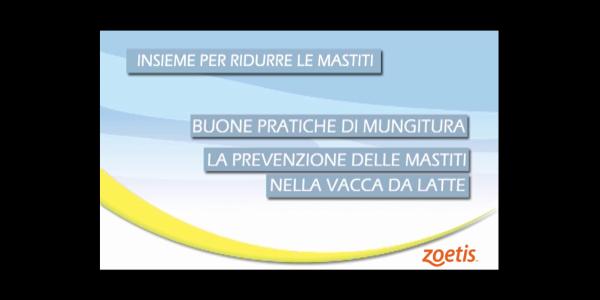 La prevenzione delle mastiti secondo Zoetis / SETTE VIDEO