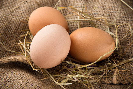 Uova, prezzi in caduta libera