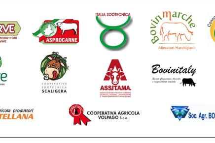 Ecco la CARTA DI PADOVA, a sostegno della zootecnia bovina da carne italiana