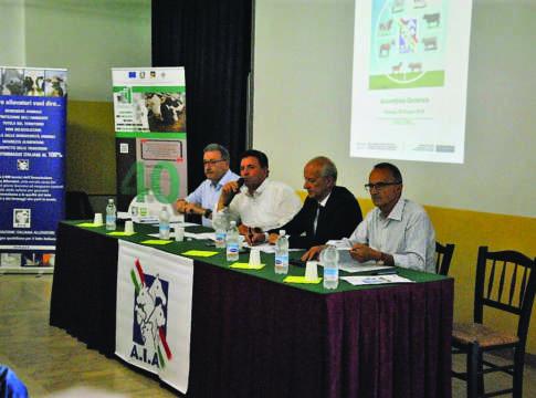 assemblea Arav