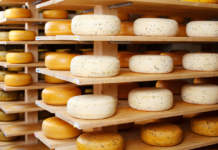 formaggi latte crudo