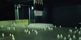 laboratorio genetica e servizi