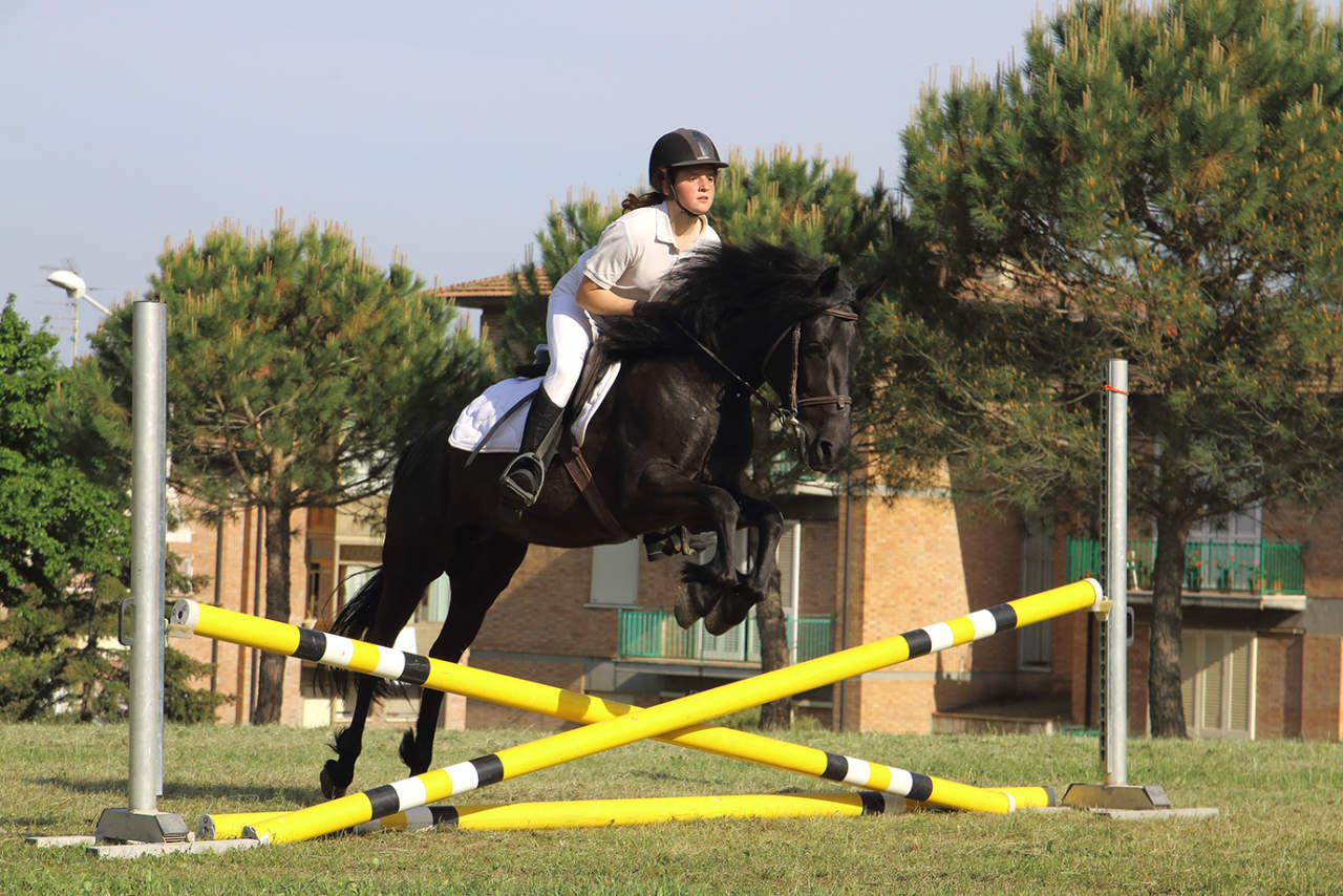 cavallo Monterufolino