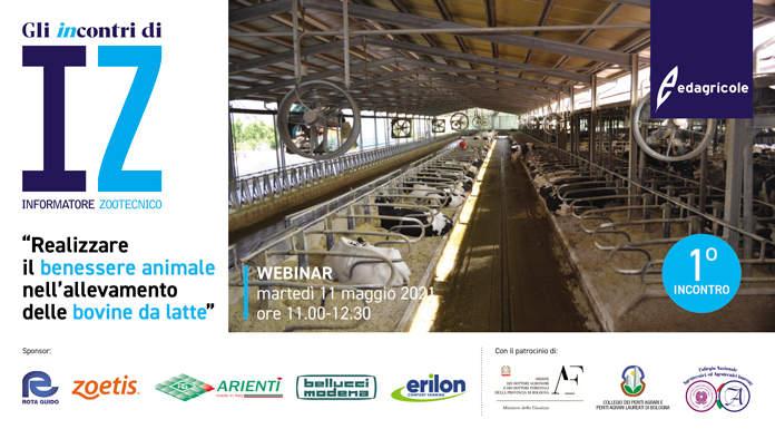 Webinar: Realizzare il benessere animale nell'allevamento delle bovine da latte