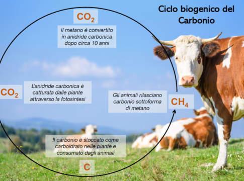 metano dalla zootecnia