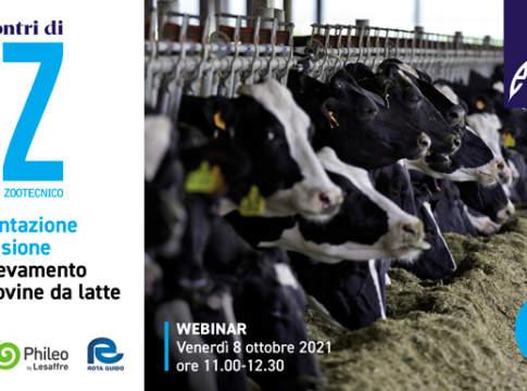 Webinar: l'alimentazione di precisione nell'allevamento delle bovine da latte