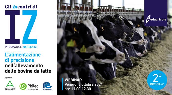 Alimentazione di precisione bovine da latte